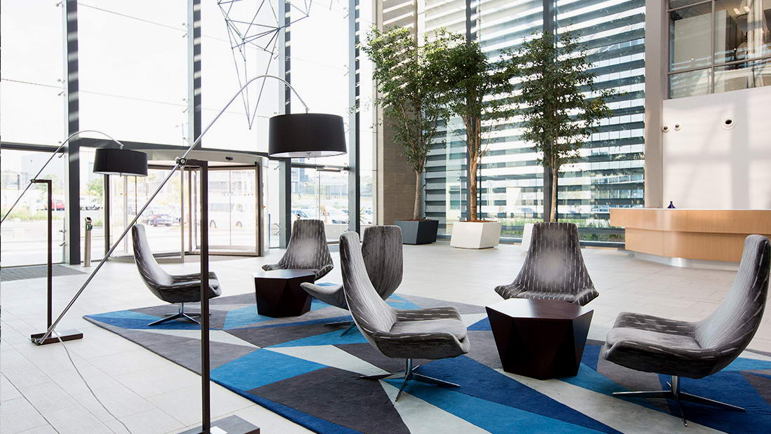 Large Corporate Rug South Africa